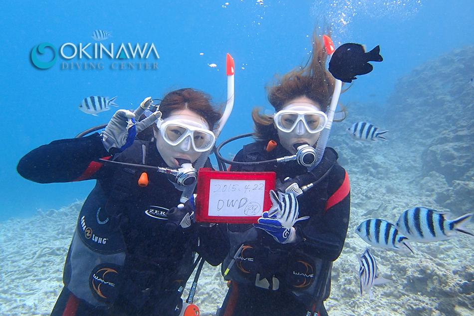 沖縄でライセンス取得